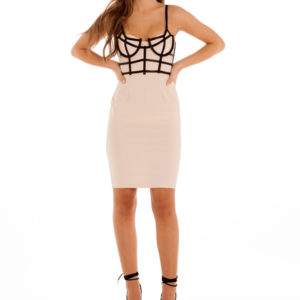 Forbidden Love Dress in Blush
